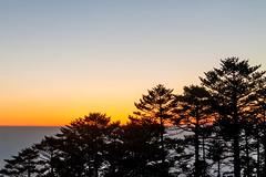 The Horizon.....Sandakphu !! (sandy_photo) Tags: sky orange cloud india mountains beautiful sunrise canon landscape incredible eastern bengal himalayas mountainscape sandakphu