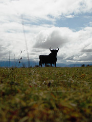 Un toro de Osborne (Rubén Díaz Caviedes) Tags: sky españa clouds logo spain cloudy icon bull cielo segovia nubes toro icono osborne bullfighting logotipo veterano castillayleón torodeosborne manoloprieto fresnodelafuente torodelidia