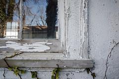 Abandoned at 39 Park - Workshop - IX (RGL_Photography) Tags: windows abandoned newjersey unitedstates workshop monmouthcounty peelingpaint jerseyshore longbranch abandonedworkshop abandonedinnewjersey windowporn nikon18105mmf3556vr nikond7000 abandonedat39park 39parkave