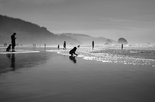 Tolovana Beach