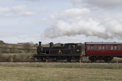 LSWR Adams O2 Class 0-4-4T W24 Calbourne crosses Asahey Grounds (John Hague) Tags: adams railway steam isleofwight railways britishrailways havenstreet lswr calbourne isleofwightsteamrailway londonsouthwesternrailway 044t photocharter timelineevents
