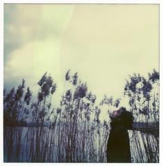Pola Nord (La T / Tiziana Nanni) Tags: film portraits polaroid sx70 luca analogue ritratti ritratto pola impossible polaroidsx70 pellicola analogico istantanea polaroidportrait iamyou tizianananni