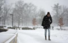 Snow focused