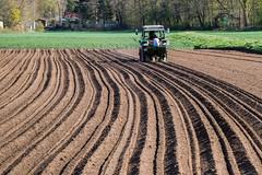 Der Furchenzieher (fotomanni.de) Tags: bayern traktor struktur bauer braun franken nürnberg frühling acker mittelfranken linien furche furchen