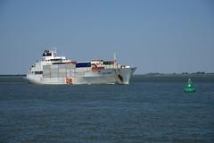 Dole Europa (larry_antwerp) Tags: netherlands ship nederland vessel schelde dole reefer  schip      walsoorden         doleeuropa