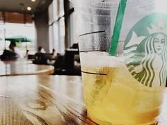 best drink for summer (Youngor He) Tags: coffee tea drink starbucks lemontea