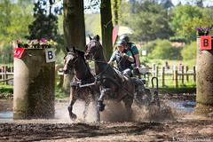 2016-05-08 Menwedstrijd Kromme Zweppe (1a) (Peter Donderwinkel) Tags: horses horse game sport race speed canon outdoor pony horseracing wedstrijd apeldoorn paarden ugchelen tweespan menwedstrijd vierspan krommezweppe