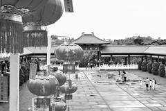 Ano Novo Chins (Alexandra Deitos) Tags: brasil sopaulo sp zen oriental festa templo anonovo zulai chins arlivre budista drago festejo