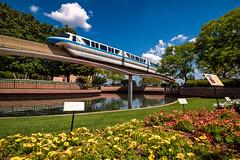 Monorail Monday - Flower Beds of Future World (MattStemerman) Tags: epcot nikon disney disneyworld d750 monorail wdw waltdisneyworld epcotcenter futureworld