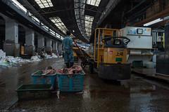 finishing time (kasa51) Tags: people japan tokyo tsukiji tuna fishmarket turrettruck