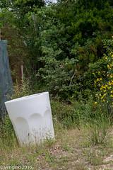 Bicchierone (vengino) Tags: parco del chianti sculture siena toscana parchi macchiamediterranea parcosculturedelchianti