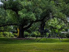 Sculpture garden-3 (uxbobham) Tags: sculpture art spider neworleans sculpturegarden