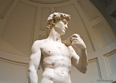 Michelangelo's David (GSB Photography) Tags: italy man art statue florence italian gallery 500v20f 100v10f firenze marble michelangelo renaissance masterpiece thedavid civilliberties accademia 1000v40f 250v10f