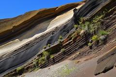 Mil Hojas de lava (thoskar) Tags: textura nature landscape volcano lava spain textures tenerife canaryislands islascanarias volcn parquenacional