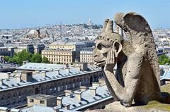 Atop Notre Dame, Paris