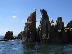"Abel Tasman national park <a style=""margin-left:10px; font-size:0.8em;"" href=""http://www.flickr.com/photos/83080376@N03/16672446159/"" target=""_blank"">@flickr</a>"