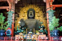 Daibutsu (orgazmo) Tags: stilllife japan buddha sony daibutsu nara vairocana todaijitemple greatbuddhahall sonyalpha a6000 sel1018 1018mmf4oss