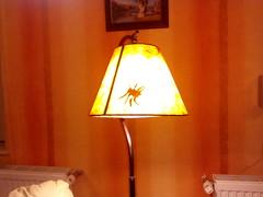 20150401_Április_210817 (emzepe) Tags: lamp spider hungary day joke april utca este 37 otthon fools pók ungarn tavasz practical 2015 hongrie napja április lámpa aranyos vicces vicc hódmezővásárhely nappali tréfa bercsényi nálunk lóránt humoros áprilisi bolondok