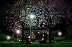 Under tree (maksimermak) Tags: street city light boy color tree green girl grass children nikon russia          nikond3100