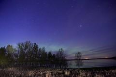 May nights May Day (John Andersen (JPAndersen images)) Tags: blue trees sky grass night clouds stars aurora dawsonlake