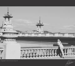 Desde el Montjuic (Patricia Araya Monsalve) Tags: barcelona madrid street viaje espaa byn calle sevilla spain basilica iglesia personas ventanas granada urbano perspectiva sagradafamilia turismo giralda momentos escenas gotico palaciodecristal elretiro guadanquivir