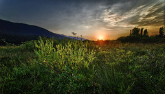 The sun sets over the horizon (marko.erman) Tags: light sunset summer sky panorama sun lake green grass clouds plante landscape angle earth horizon bottom wide dry slovenia terre slovenija paysage extrieur ultra cracked champ pelouse jezero intermittent cerknica