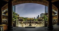 Jingan Si (Rob-Shanghai) Tags: china city temple gold shanghai buddha pano jingan pillars leicaq