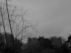 Canon s90 - BW (Arnar Steinthorsson) Tags: city blackandwhite bw monochrome sepia canon copenhagen landscape blackwhite noir negro bn cph arnar kbenhavn canons90 steinthorsson