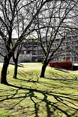 craquelure (Harry Halibut) Tags: south sheffield yorkshire images allrightsreserved sheffieldbuildings colourbysoftwarelaziness imagesofsheffield sheffieldarchitecture 2016andrewpettigrew sheff1605041679