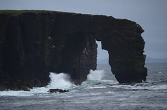 201_TheDrinkingHorse (monika & manfred) Tags: nature scotland rocks wind hike mm surroundings shetlands eshaness shetlandislands shetlandisles drinkinghorse holidays3