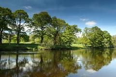 River Dee, Llantysilio. (Mat Price) Tags: trees water berwyn dpp riverdee llantysilio canon1740mm afondyfrdwy canon70d cokinpolarizingfilter