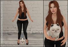 #684 (addielynnsl) Tags: life hot hair promo truth box sale sl second glam affair luxe belleza fuss mishmish illi catwa