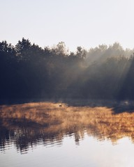 Just The Two Of Us (ukasz Babula) Tags: wood morning autumn trees sky sun mist lake tree nature water misty fog forest sunrise landscape swan pond woods outdoor foggy peaceful poland sunny calm swans silence sunbeam