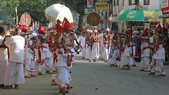 Kandy Perahera (IMG_3697b) (Dennis Candy) Tags: street boy people man heritage festival dance costume day culture buddhism dancer parade celebration srilanka ceylon procession tradition serendipity pageant hinduism kandy ves perahera serendib serendip esala
