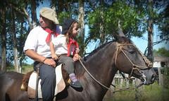 Tal cual (Eduardo Amorim) Tags: boy brazil horses horse southamerica argentina criollo caballo cheval caballos sauce cavalos corrientes pferde cavalli cavallo cavalo gauchos pferd menino junge hest garon hevonen chevaux gaucho ragazzo guri  amricadosul hst gacho  amriquedusud  gachos  sudamrica suramrica pi amricadelsur  sdamerika crioulo caballoscriollos criollos   americadelsud  crioulos cavalocrioulo americameridionale caballocriollo piazito eduardoamorim cavaloscrioulos provinciadecorrientes corrientesprovince