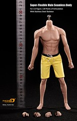 PHICEN PL2015-M32 Male Asian Built Steel Seamless Body - 10 (Lord Dragon ) Tags: hot toys actionfigure doll seamless malebody onesixthscale 16scale phicen 12inscale