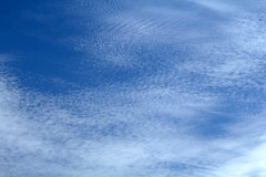 Clouds (BenG94) Tags: wisconsin clouds canon northwoods arborvitae 60d canon60d