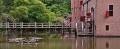 'Het Oude Loo' (henkmulder887) Tags: park holland museum thenetherlands pieter veluwe apeldoorn gelderland margriet tuinen paleishetloo kroondomeinen hetoudeloo