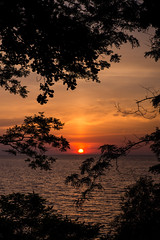 #sunset (wickedmartini) Tags: trees light sunset summer sun lake nature weather silhouette clouds composition landscape roc flickr frame lakeontario rochesterny flickrfriday michaeldavignon nikond610