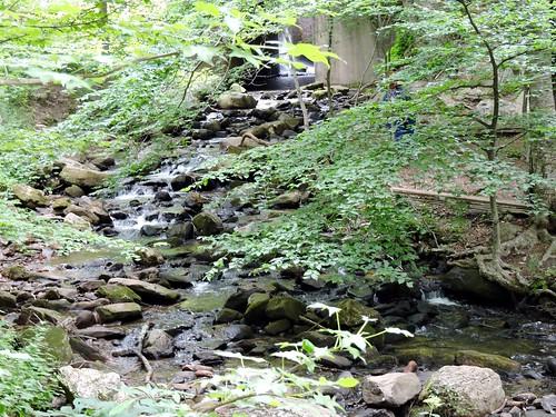 Amicalola Falls pt2