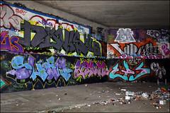 Various... (Alex Ellison) Tags: northlondon mhb urban graffiti graff halloffame hof ctr cityrollers novis lemon htb virus slam tbf thebufffails cp5 atom eps sod uga boobs
