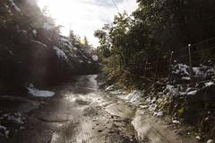 (aN ACciDenT) Tags: verde blanco sol camino amor nieve paseo invierno frío vuelta cabañas hermosura loshornillos