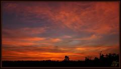 To there (WanaM3) Tags: wanam3 sony a700 sonya700 texas houston elfrancoleepark park twiligth civiltwilight redsky nature vista landscape