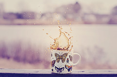 Coffee Splash (HugsNotDrugs11385) Tags: butterfly butterflies bugs mug splash splashphotography coffeesplash