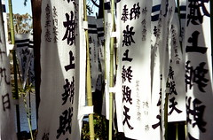 flags at Hachimangu (troutfactory) Tags: film japan shrine kamakura flags  analogue superia100  tsurugaokahachimangu  kodaksignet