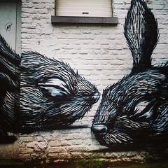 ROA Gent (Ferdinand 'Ferre' Feys) Tags: streetart graffiti belgium belgique belgië urbanart graff ghent gent gand graffitiart roa arteurbano artdelarue urbanarte instagram