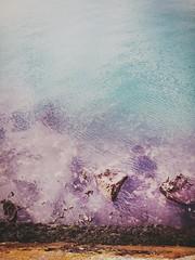 Beautiful nuances of the sea colours #sea #colour #rocks #blue #purple #coldwater #cold #seafront #port #harbour #water #translucid #transparent #seaweed (mariasforzesca) Tags: blue sea seaweed cold colour water port rocks purple harbour transparent seafront translucid coldwater