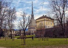 Torino (Fil.ippo) Tags: panorama torino cityscape piemonte turin piedmont filippo moleantonelliana d7000 filippobianchi