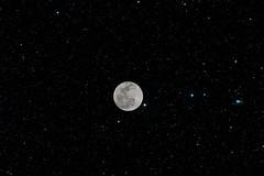 Tonight's full moon #mehtap #Full_moon #stars_are_fake #yıldızlı_gök_gerçek_değil #Nikon #D3100 #April #Nisan (dima_abuarida) Tags: nikon fullmoon april nisan mehtap d3100 starsarefake yıldızlıgökgerçekdeğil