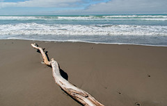 Snaking Out ot Sea (Jocey K) Tags: newzealand water clouds sand shadows driftwood southisland gorebay northcanterbury